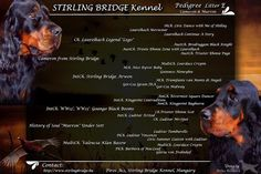 Stirling Bridge Kennel: Alom
