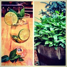 We grow our own mint so we can make a very tasty mojito!