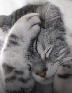 Sleepy time.... #Relax more with healing sounds: