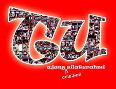 TU icon3
