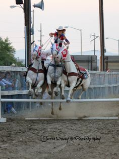 Event Action Photography, cowgirl chicks, trick riding, deer lodge mt.