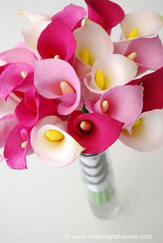 Black Calla Lily, Calla Lily Flowers, Calla Lily Bouquet, Cala Lilies, Bridesmaid Bouquet, Wedding Bouquets, Wedding Flowers, Lilly Plants, Flowers Perennials