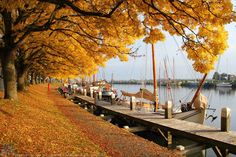 De haven van Enkhuizen in het najaar...een mooier kleurenpalet kun je je niet wensen.