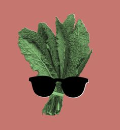 Jokes About Kale | 1