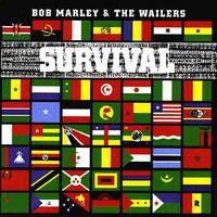 bmw-survival.jpg