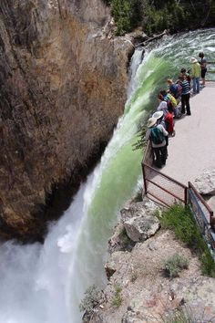 I think the best word to describe the Brink of the Lower Falls in the Grand Canyon of the Yellowstone is AWESOME. Pictures don't do it justice. You stand at the top of the waterfall and you can feel the power of a bazillion pounds of water coming down several hundred feet all at once.