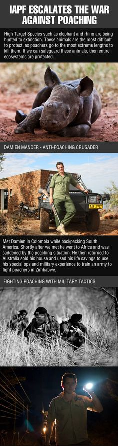 The Anti-Poaching Crusader