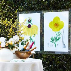 Color Trend | Yellow Tulips, Poppies, Black Eyed Susan, Wisteria, Color Trends, Wall Art Prints, Vibrant, Wall Decor, Sweets