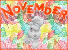 November For Averie Cute Images, Cute Pictures, Sweet November, November 2015, Teddy Bear Pictures, Blue Nose Friends, Birthday Month, Birthday Club, Birth Flowers