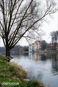 365 Tage Fotochallenge: Tag 81 - Morgens an der Donau
