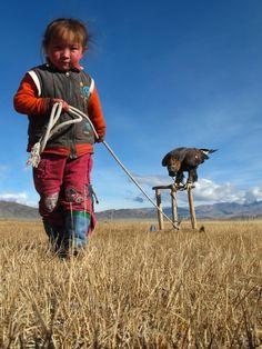 Eagle Hunter in Training. Mongolia