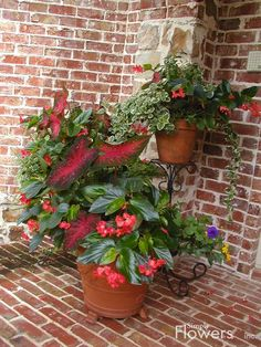 Simply Flowers, Inc. - Containers/14