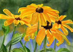 Black Eyed Susans Art Print by Sharon Freeman.  All prints are professionally printed, packaged, and shipped within 3 - 4 business days. Choose from multiple sizes and hundreds of frame and mat options.