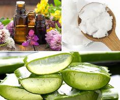 Prepara un gel natural para hidratar, cicatrizar y ayudar a tu piel a recuperar toda su vitalidad.