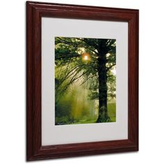 Trademark Art 'Magical Tree' Matted Framed Art by Kathie McCurdy, Size: 11 x 14, Multicolor
