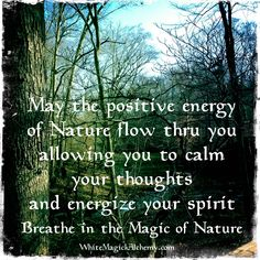 Breathe in the magic of nature