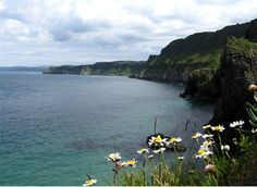 Ulster ~ Ireland (where I traced the Crains back to)