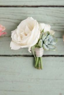 The groom's boutonniere will be ivory spray roses, pale green succulents, and blue tweedia.  The other boutonnieres will be ivory spray roses and pale green succulents wrapped in raffia with the stems showing.