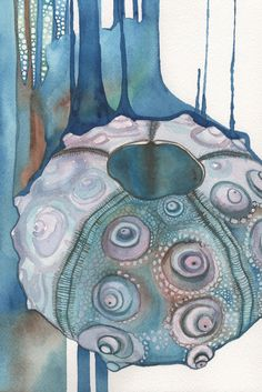 Outdoor Bathrooms 513480794990453627 - Watercolour Sputnik Sea Urchin shell 5 x 7 print of detailed artwork with whimsical surreal blue green brown aqua teal earth tones Source by lasivyrehear Sea Life Art, Sea Art, Sea Urchin Shell, Sea Shells, Sea Urchins, Art Aquarelle, Watercolor Paintings, Watercolors, Illustration Art