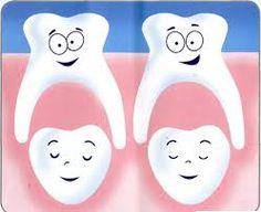 I #denti primari servono da guida per quelli permanenti; se questi assumono posizioni corrette all'interno della bocca, fanno sì che quelli permanenti spuntino al punto giusto e in maniera corretta. #Dentist #Teeth