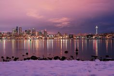 Snowy Morning with Goose | Seattle at Dawn From Gasworks Par… | Flickr