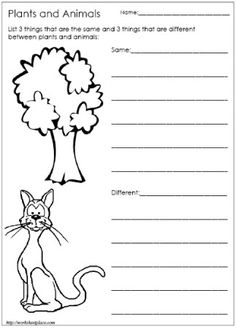 our 5 favorite prek math worksheets science worksheets animal habitats and third grade. Black Bedroom Furniture Sets. Home Design Ideas