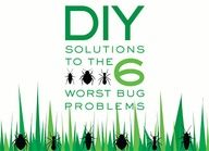Get rid of roaches, ants, stink bugs, termites, fleas, and beg bugs using all-natural remedies