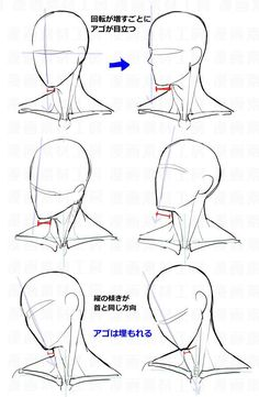 Anatomy Drawing Tutorial You Can Enjoy drawing tips With These Tips Drawing Heads, Body Drawing, Anatomy Drawing, Drawing Base, Drawing For Kids, Male Face Drawing, Head Anatomy, Neck Drawing, Anatomy Art