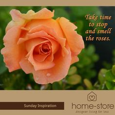 Sometimes we need to stop and take time to appreciate the smaller things in life. Home-Store wishes everybody a fabulous Sunday with your loved ones, and we look forward to seeing you again during the week.
