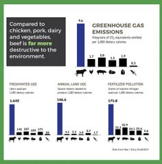 You Asked: How Can I Find Out the Carbon Footprints of Different Foods? Rachel Williams, You Ask, Greenhouse Gases, Carbon Footprint, Footprints, Different Recipes, Organic Recipes, I Can, Grow Organic