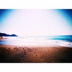 Dusk, Blue Flowers, Summer Beach, Twilight, Sunrise, Weather, Clouds, Night, Pretty