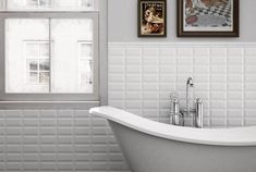 Tegels Badkamer Limburg : Beste afbeeldingen van tegels in flush toilet powder