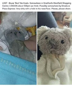 """Lost at Westfield Shopping Centre, Stratford, London on 15 Aug. 2016 by Revecca: Much loved Bruce """"Boo"""" Koala comforter. Disappeared in Westfield Stratford London, Westfield Shopping Centre, All Is Lost, Pet Toys, Teddy Bear, Animals, Animales, Animaux, Teddy Bears"""