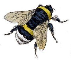 Vintage Clip Art – Fabulous Bumble Bees