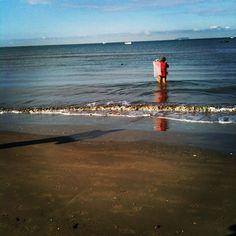 #tirrenia#shell#seafood#sea#sun#beach#mare#spiaggia