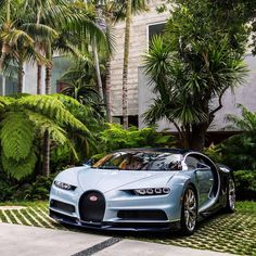 Audi, Bmw, Porsche, Camaro Auto, Chevy Camaro, Corvette, Supercars, Car Tattoos, Bugatti Cars