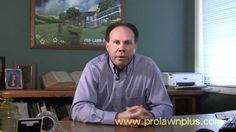 FAQ Ants - ProLawnPlus  ProLawnPlus can protect your home with our new and very popular insect control service, Perimeter Pest Protection.  Perimeter Pest Protection is a series of four insect control treatments which provide a shield around your home, reducing the number of such insects as ants, crickets, fleas, mites, and spiders from entering your home. In addition, Perimeter Pest Protection treatments can also aid in the protection of your landscape by reducing plant-eating insects.