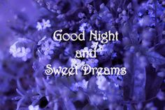 Good Night and Sweet Dreams ✫*¨*.¸¸.★☽#Quotes #Saings