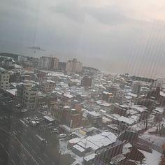 Morning from east Korea