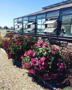 Eagle Idaho lean-to greenhouse, built by Greenhouses, Etc. Eagle Idaho, Lean To Greenhouse, Greenhouses, Mansions, House Styles, Building, Home Decor, Green Houses, Decoration Home