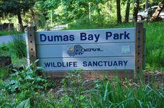 Dumas Bay Park - Wildlife Sanctuary - Federal Way, WA 98003