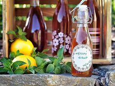 Mátový sirup Homemade Gifts, Food And Drink, Drinks, Bottle, Rose, Plants, Blog, Syrup, Drinking