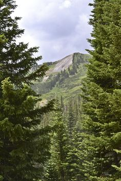 Mt Crestted Butte