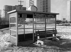 Scarborough, Ontario - Victoria Park & York Mills looking nw 1973 Scarborough Ontario, Toronto Ontario Canada, Walk The Earth, North York, Landscape Photos, Ol, This Is Us, Childhood, Victoria