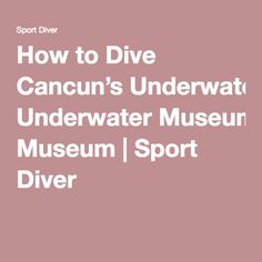 How to Dive Cancun's Underwater Museum   Sport Diver