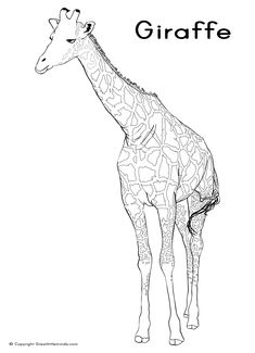 Horse Coloring Pages For Kids : Free Printable Coloring