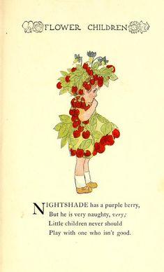 Flower children; the little cousins of the field- Nightshade