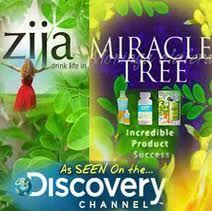 Zija the miracle tree