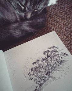 It's stormy outside but Luna and me are as snug as little bugs. #sketchbook #sketch #artsy #art #artist #tinyworld #tiny #house #tinyhouse #smallhouse #illustration #trees #nature #illustrateyourworld #storm #woods #forest #drawing #cats #catsofinstagram #cozy #ink by elisajoest