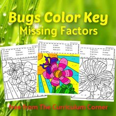 This set of bugs color key missing factors pages is a bugs color by number set for missing factor and math fact practice. This is a FREE math practice resource from The Curriculum Corner....